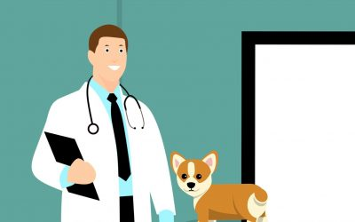 Centralita para Clínicas veterinarias