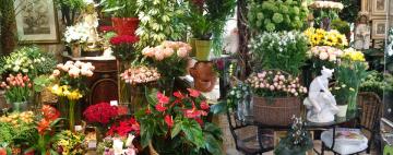 Numéros virtuels pour fleuristes