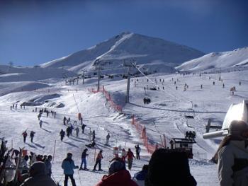 ski-opt