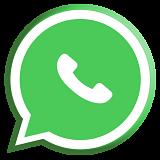 whatsapp-para-empresas-verde