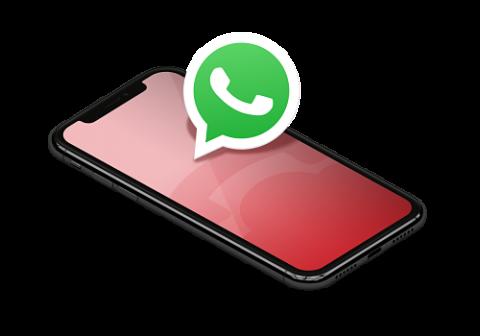 whatsapp-standard-call-center-3